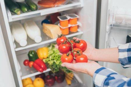 Изрезанный Вид Женщины Держащей Помидоры Возле Открытого Холодильника Свежими Продуктами — стоковое фото